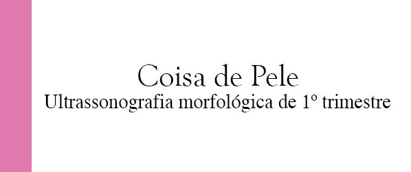 Coisa de Pele Ultrassonografia morfológica de 1º trimestre em Brasília