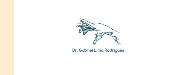 Dr Gabriel Lima Rodrigues Médico de mão em Brasília