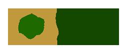Registro de Médicos Especialistas – Busca por Médico Logo