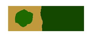 Registro de Médicos Especialistas – Busca por Médico Logotipo